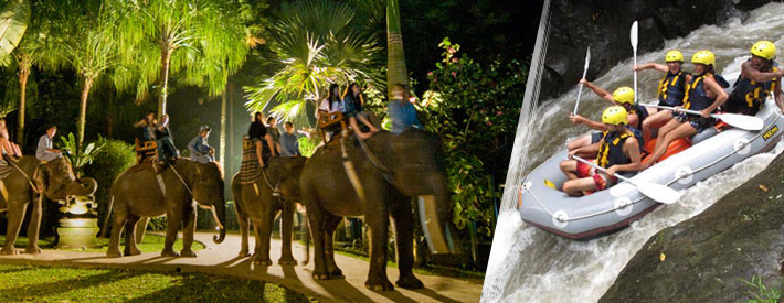ayung rafting and bali elephant ride